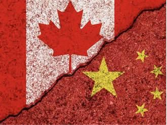 張晰》加拿大為何跟打台灣牌