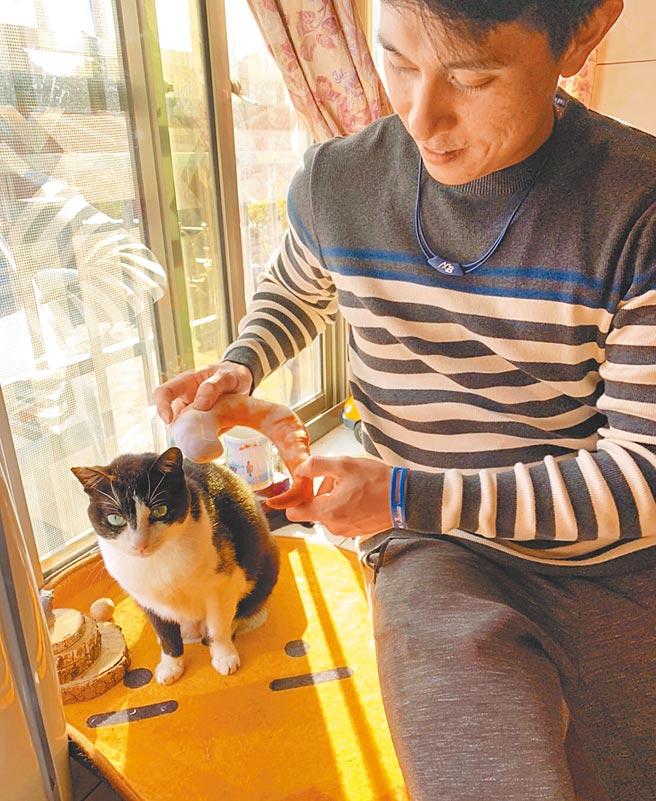 味全龍球星吳東融家中養2隻貓,黑白紋的妞妞牙齒掉光,需要更多的愛來照顧。(吳東融提供)