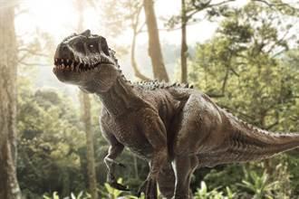 恐龍6千萬年前如何一夕絕種?專家找到關鍵證據
