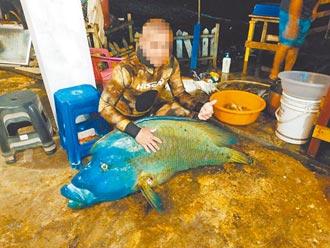 龍王鯛疑遭獵捕案 蘭嶼2人交保