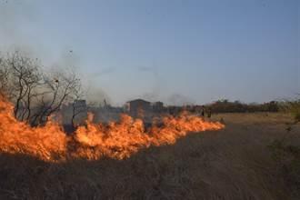 金门去年烧杂草火警280件 消防局未来将依法开罚