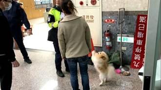 愛犬除夕夜走失 瑞芳警協助1周後與飼主團圓