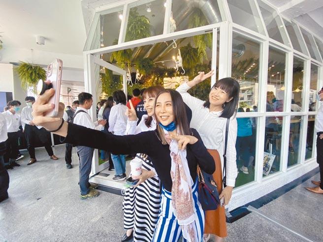 民进党高雄市党部大改造,18日正式启用,雨林咖啡馆形式很亮眼,吸引党内年轻女议员与友人自拍留念。(林宏聪摄)