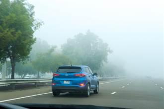 山路濃霧慢駛遭超車還嗆龜 下秒傳「碰!啊X」結局超療癒