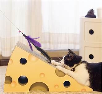 貓之日為家中喵皇獻禮 Pinkoi推限時優惠