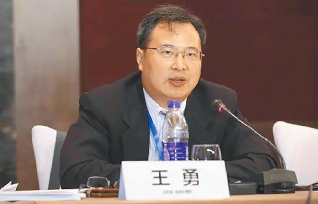 北京大學國際關係學院教授、北京大學美國研究中心主任王勇。(摘自網路)