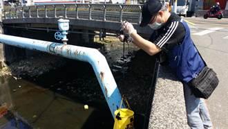 五股坑溪表層浮油脂 新北環保局逮調理包工廠