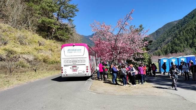 武陵農場大客車上、下客處遊客眾多。(民眾提供/王文吉台中傳真)