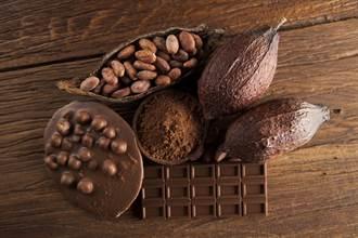 巧克力原料真面目曝光 切开一看眾人吓傻:不敢再吃