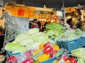 農民搶種高麗菜導致價格暴跌 北農公佈高麗菜食譜盼解套