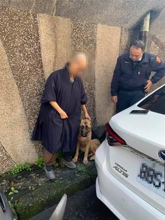 基隆寺廟吃素、聽佛號狼犬失蹤 千名網友協助尋回