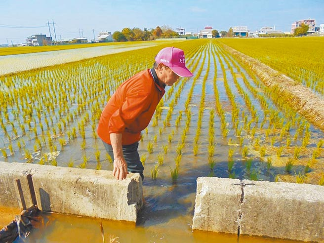 雲林縣水情吃緊農業供水減半,春耕啟動分區輪灌與水井供水。(本報資料照片)
