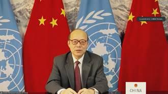 陸駐日內瓦代表:人權成為有關國家政治操弄的工具
