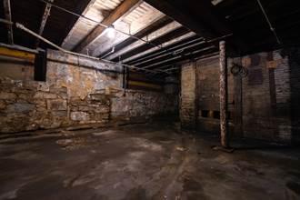 掀開地下室地板驚見4猛獸 屋主留牠們住下來冬眠