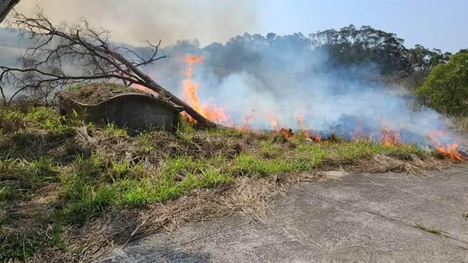 火災 山林