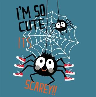 蜘蛛網最強學說 縱絲與橫絲的任務分工