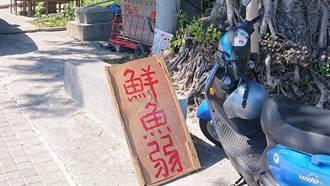 台東伯擺攤賣「鮮魚弱」 遊客揭可愛真相:可以讓他紅嗎?