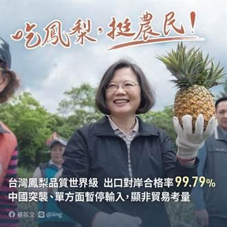 【陸鳳梨禁令】打臉小英「談判專家」 施正鋒酸:草包草螟弄雞公