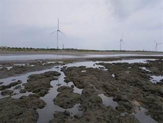 【藻礁公投】建新管取代三接? 中油嘆難:環評與填海造陸至少10年