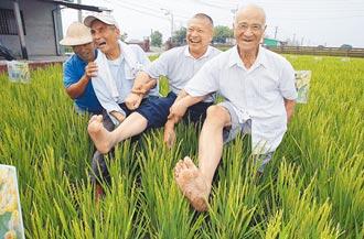 崑濱伯教會我們 珍惜每粒稻穀