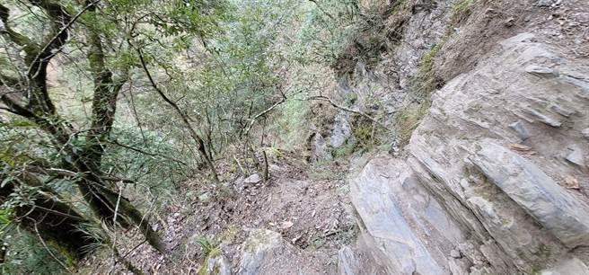 鄭姓山友在距離登山口約1.3公里處,不慎摔落山谷。圖為山友拍攝傳回消防局現場畫面。(花蓮縣消防局提供/王志偉花蓮傳真)