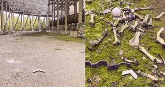 網友透過Google地圖查看車諾比街景時發現遺骸。(圖/翻攝自googlemapsfun TikTok)