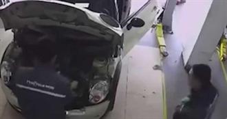 MINI方向盘卡死  掀开引擎盖惊见40cm巨鼠  男技师吓到破音狂奔
