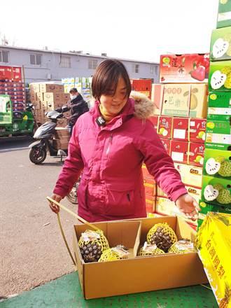 【鳳梨風暴】陸禁台灣鳳梨恐生骨牌效應 1原因將讓台灣精品水果在陸潰不成軍