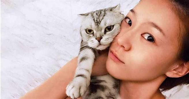 Hello本來只是寄宿在鍾瑶家,結果她捨不得讓朋友帶回去,最後也變成她的愛貓。(圖/翻攝自鍾瑶臉書)