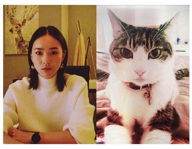 鍾瑶將她與Bucca的照片放在一起,大家都說「沒見過這麼像的主人和寵物」。(圖/翻攝自鍾瑶臉書)