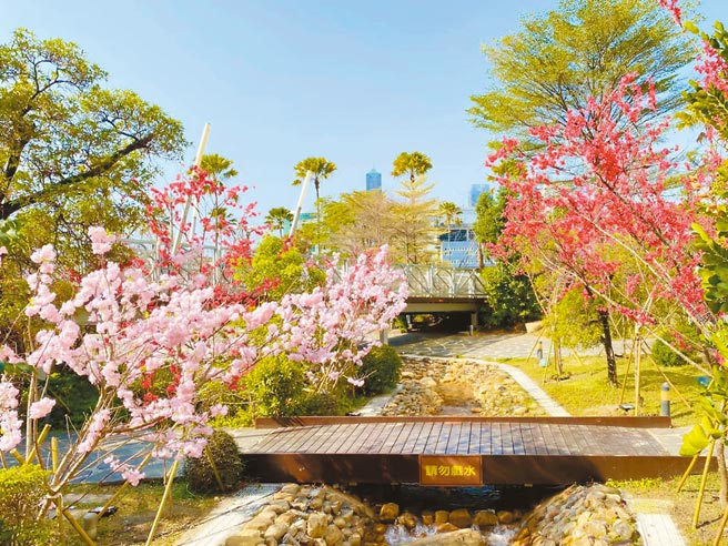 高雄夢時代打造「櫻花林」,讓民眾在市區能感受到偽出國的fu。