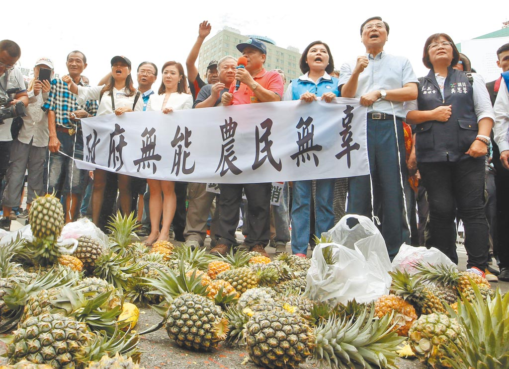 大陸禁台灣鳳梨進口,導致鳳梨農民憂價格崩盤,農委會又決定不保價收購,農民為了生計很可能重演抗議事件。圖為2018年7月4日鳳梨農串連北上赴政院抗議。(本報資料照片)