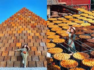新竹|秋冬必去新埔景點 金黃柿餅海、金字塔還有彩虹水管屋