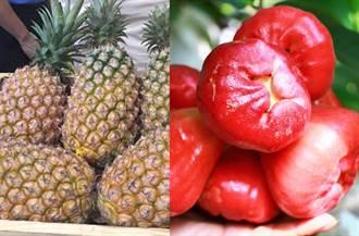 【陸鳳梨禁令】蓮霧也完了?葉慶元預告:還會有別的農產品被禁銷
