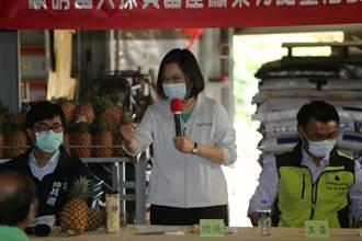 蔡英文总统视察凤梨产销   呼吁农民「免惊免烦恼政府挺您」