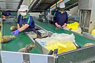 屏縣預建農業國際化標準包裝加工場 強化競爭力