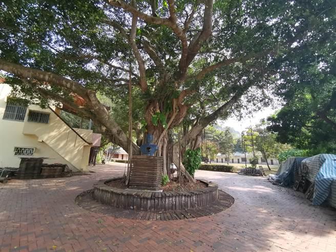 台南市东山区吉贝耍国小水云分校3月起将由荒野保护协会进驻认养。(刘秀芬摄)
