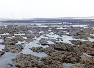 大潭藻礁禁校園連署總召進入 管制員加碼:尤其是環團和記者