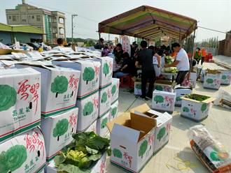 不只鳳梨高麗菜也要救 彰化議員、婦女協會自救認購萬公斤