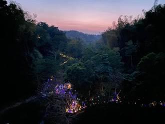 龍崎空山祭首採售票制照樣吸近17萬人次 10萬人買票朝聖