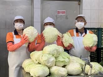 黃偉哲認購1500顆高麗菜 為學童午餐加菜