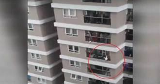 3歲女童從12樓急墜!搬家工伸手接住救一命
