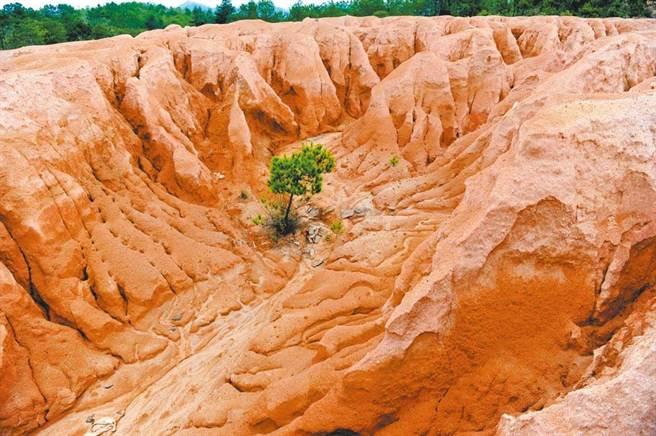 稀土的開採會為環境帶來極大破壞,圖為江西信豐縣濫採稀土留下的尾砂山。(新華社)