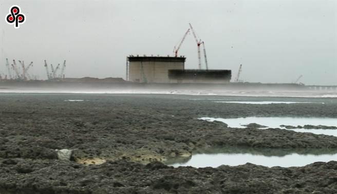 藻礁議題持續延燒。(本報系資料照)