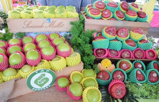 農民致力種出品質好的果品,且「惦惦做」,避免遭政治風暴波及。(林和生攝)