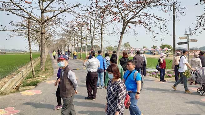 228連假期間,台南白河區木棉花季3天共計吸引近2萬名民眾賞花。(讀者提供/劉秀芬台南傳真)
