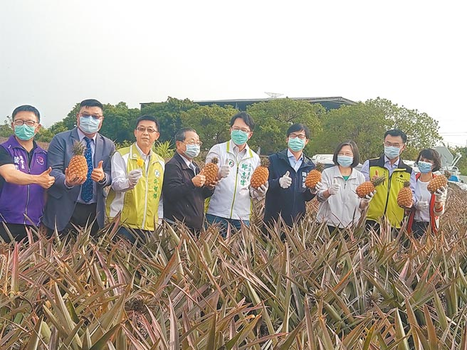 蔡英文總統昨日視察大樹鳳梨產銷,呼籲農民「免驚免煩惱政府挺您」。(林雅惠攝)