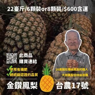 協助農民 國民黨網路行銷近6000斤鳳梨