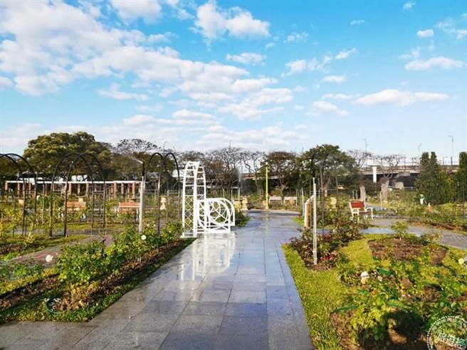 臺北玫瑰園新增的景觀區(圖:北市府公園處提供)