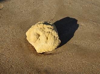 颱風後幸運婦撿到飄魚腥味怪石 鄰居一看羨慕:賺翻了